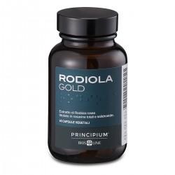 Ridicola Gold Principium