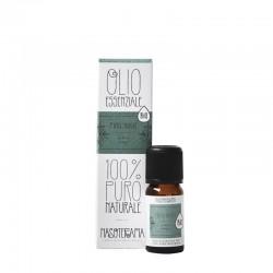Pino mugo olio essenziale nasoterapia